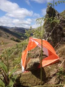 018 214x285 Loughrigg Orienteering 2015