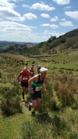 50th Fairfield Horseshoe Race 014 160x285 FAIRFIELD 2016 Race Report and Results