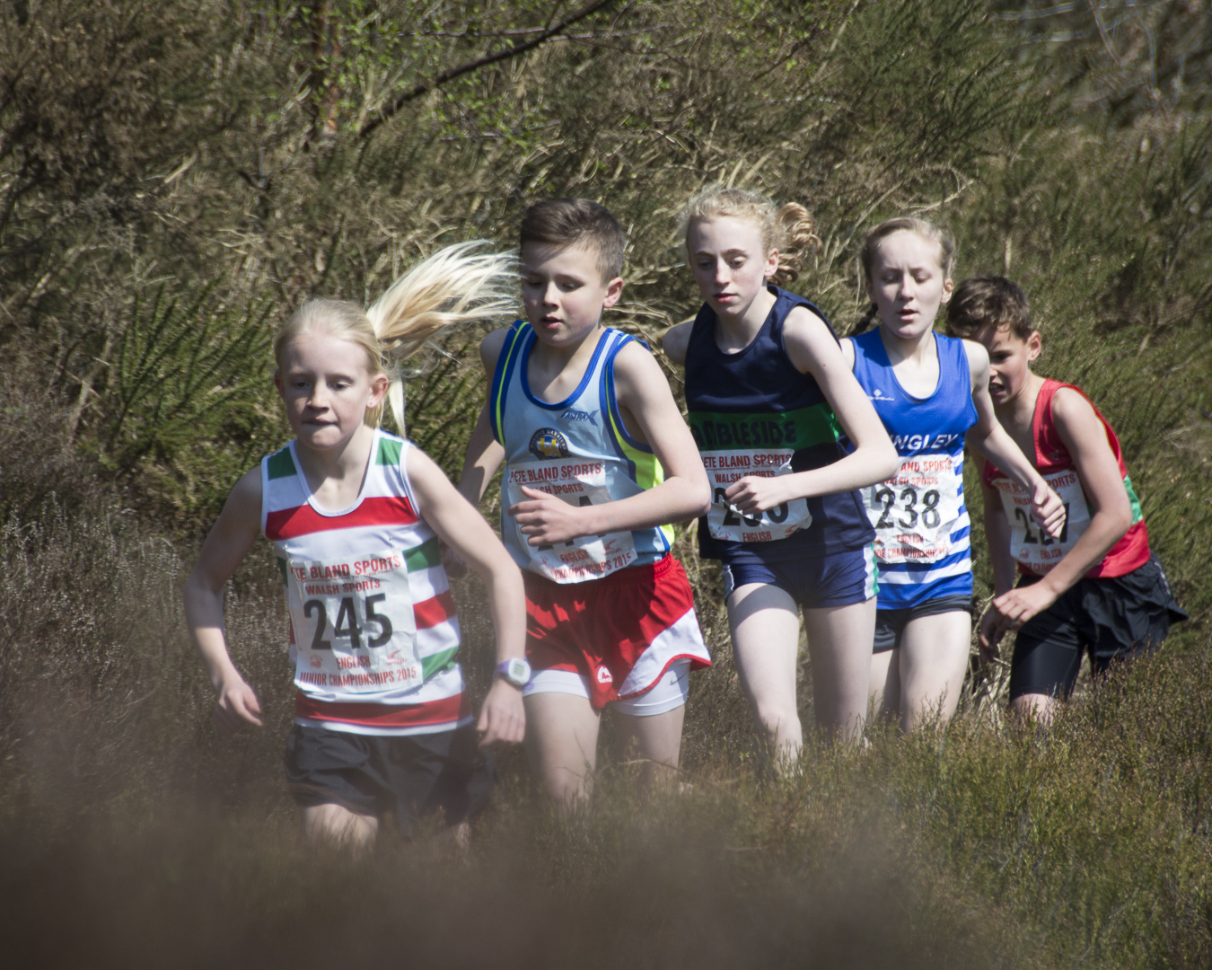 DSC3428 West Nab Fell Race Photos 2015