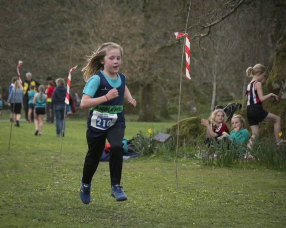 DSC3232 570x456 Todd Crag Junior Fell Race Photos 2015