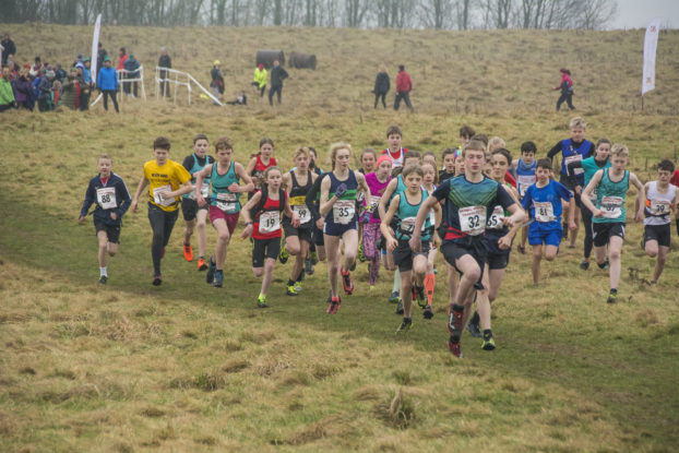 DSC7514 622x415 Scout Scar Fell Race Photos 2019