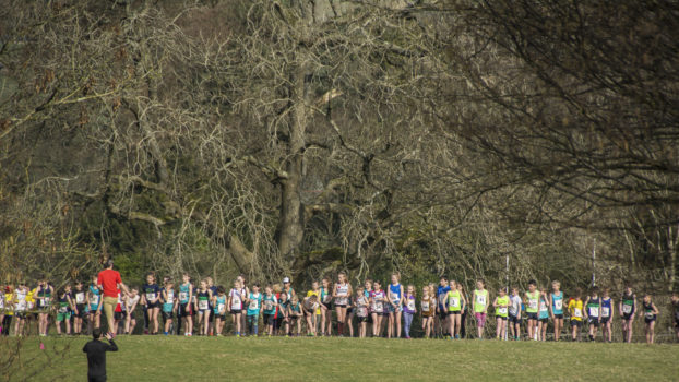 DSC9335 622x350 Sedbergh Photos 2019