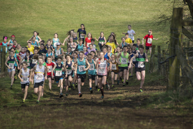 DSC9339 622x415 Sedbergh Photos 2019