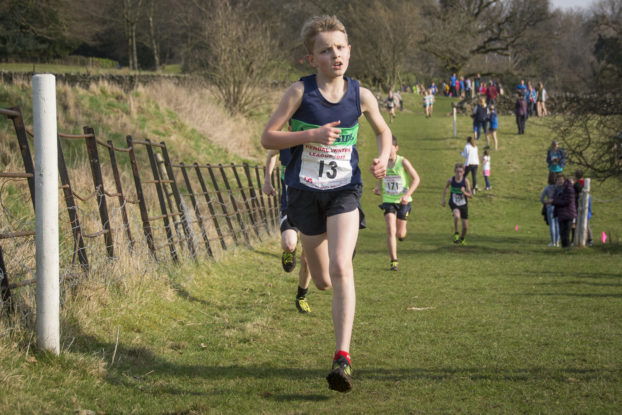 DSC9378 622x415 Sedbergh Photos 2019
