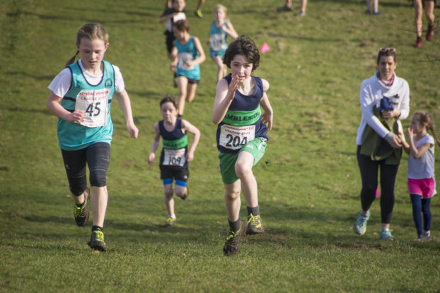 DSC9408 622x415 Sedbergh Photos 2019