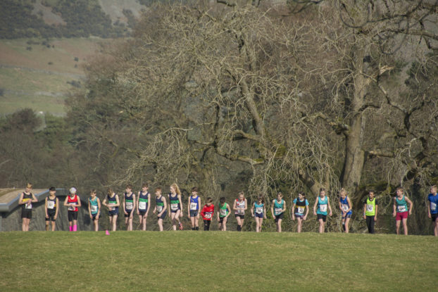 DSC9463 622x415 Sedbergh Photos 2019
