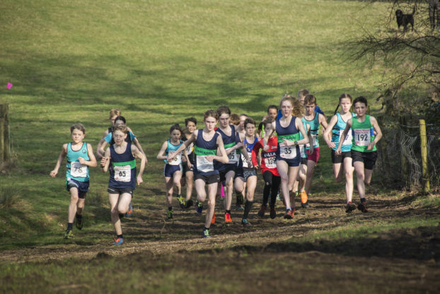 DSC9465 622x415 Sedbergh Photos 2019