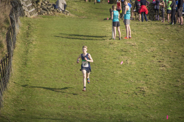 DSC9518 622x415 Sedbergh Photos 2019